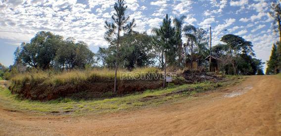 Terreno À Venda, 1027 M² Chácara Real - Cotia - Te8948