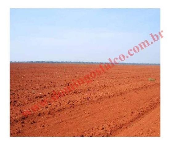 Venda - Fazenda - Zona Rural - Sorriso - Mt - D0417