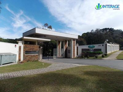 Terreno Residencial À Venda, Santa Felicidade, Curitiba. - Te0040