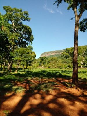 Fazenda A Venda Em Corumbá - Ms (pecuária) - 1007