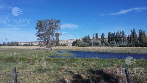 Campo - Chacra - Dolavon - Chubut