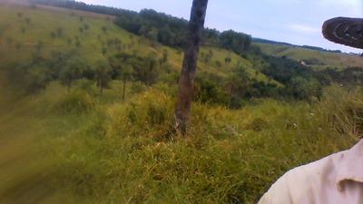 Fazenda Com 60ha Em Bambuí-mg A Venda