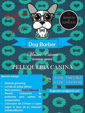 Peluqueria Canina (grooming Canino) A Domicilio