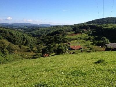 Fazenda Região De Capão Bonito Sp. - Fz00221