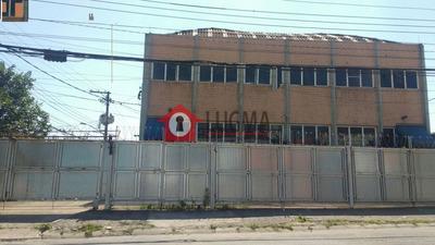 Aluga-se Galpão Industrial Em Veleiros - Lg825