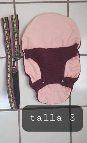 Paquete De Collar, Correa Y Sweater Talla 8 Para Perro