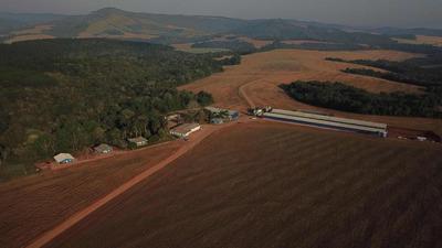 Fazenda Na Região De Tibagi/paraná