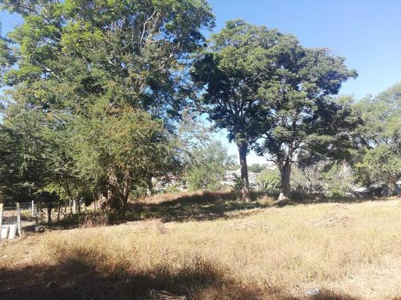 Terreno En Venta En Colonia La Escobera, Cuauhtémoc, Colima