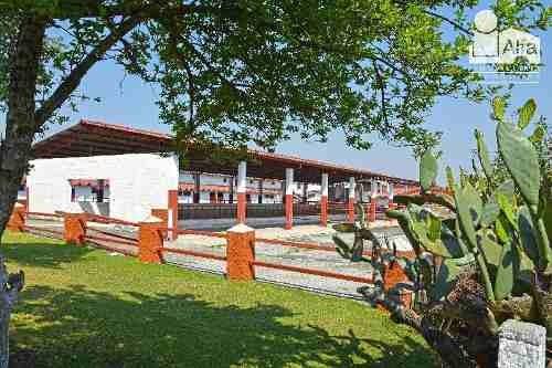Terreno Habitacional En Venta En San Martín Toltepec, Toluca, México