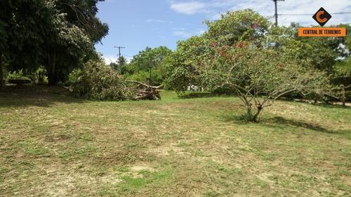 Imagem 1 de 8 de Lote No Condomínio Parque Da Aldeia - Te00198 - 33758934