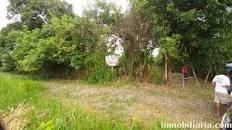 Terreno 35 Hectareas Por El Km 72 Neshuya-ucayali