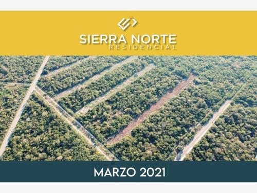 Imagen 1 de 5 de Terreno En Venta Sierra Papacal