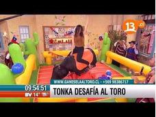Toro Mecanico, Surf Mecanico, Juegos Tipicos
