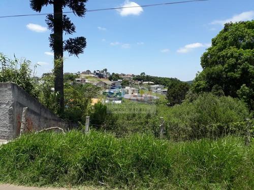 Área A Venda No Bairro Ferraria Em Campo Largo - Pr.  - 462-1