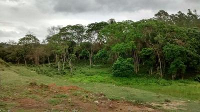 Terreno Comercial À Venda, Do Taboão, Mogi Das Cruzes. - Te0007