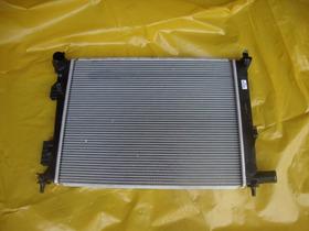 Radiador Do Hyundai Hb 20 Veloster Novo Original