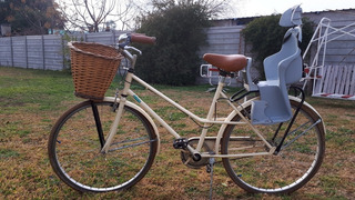 Bicicleta Vintage Usada