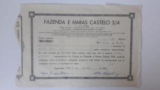 Apólice Ao Portador Fazenda E Haras Castelo S/a Com Laudo