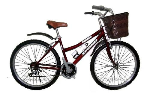 Bicicleta Vintage 18 V Canasta Tejida Componentes Taiwan