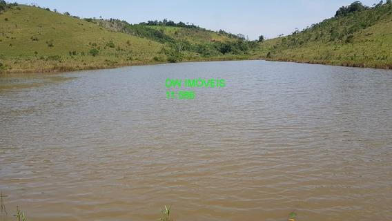 Iguape/50 Alq/plantação Pupunha/criar Gado/búfalo/lazer/ Morar - 04928 - 34462497