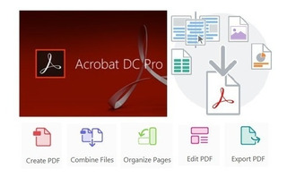 Adobe Acrobat Dc Pro 2019 Windows