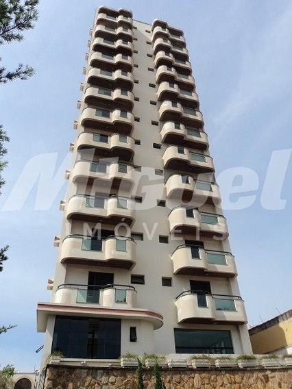 Apartamento - Alto - Ref: 903 - V-16697