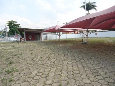 Terreno / Área Para Alugar No Indaiá Em Belo Horizonte/mg - Fz414
