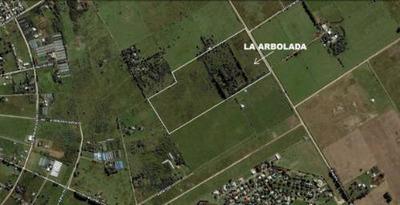 Campo En Venta Con Proyecto De Loteo