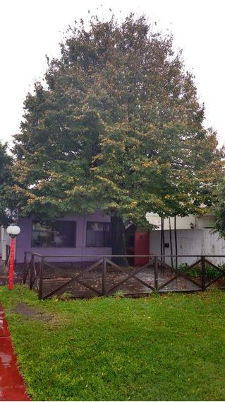 Casa De Eventos Sobre Calle 7 -200 Mts 2 - Tolosa