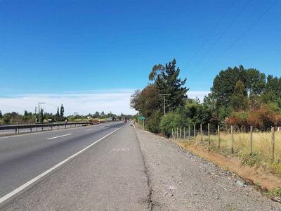 Ruta 5 Sur Km 381