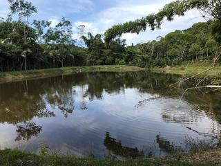 Fazenda À Venda, 363000 M² Por R$ 600.000 - Jacupiranga - Jacupiranga/sp - Fa0173