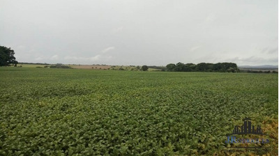 Fazenda Em Piracanjuba 55 Alqueires - Cultura - 516