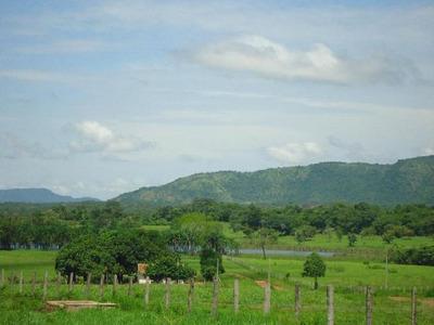 Fazenda Em Brejinho De Nazaré - To, Dupla Aptidão - 180