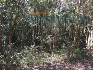 Terreno Residencial À Venda, Bosque Dos Eucalíptos, Atibaia. - Te0159