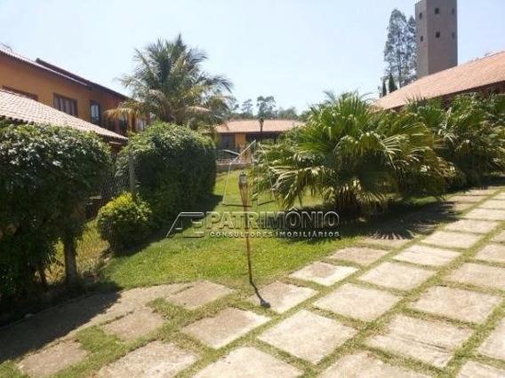 Chacara - Mato Dentro - Ref: 43788 - V-43788