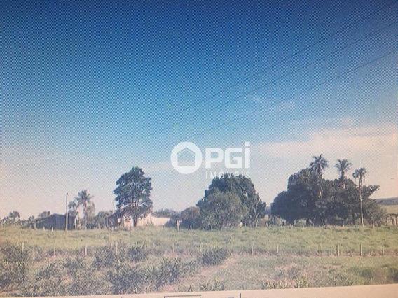 Terreno À Venda, 40140 M² Por R$ 410.000,00 - Zona Rural - Cedral/sp - Te1236
