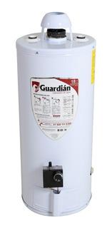 Boiler Guardian Ga-dep-040 Lt