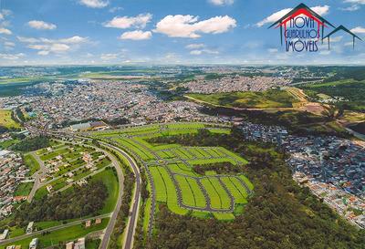 Novo Loteamento Em Guarulhos - Te00047