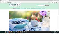Diseño Pagina Web Económica +hosting $95.000 Un Pago!