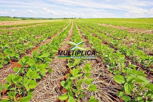 Imagem 1 de 2 de Fazenda Uberlândia, 271 Hectares, R$ 29.520,00 Por Hectare, Dupla Aptidão - 380
