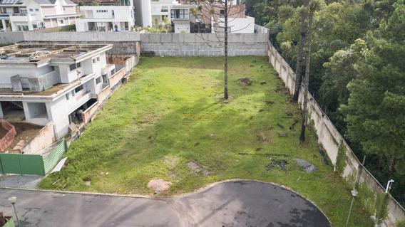 Terreno Padrão Em Curitiba - Pr - Te0009_impr