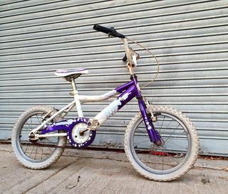 Bicicleta Raleigh Niños Niñas Rodado 16 Buen Estado