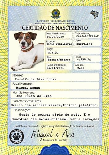 Imagem 1 de 2 de Certidão De Nascimento Pet (arte)