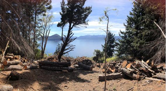 Terreno Con Costa De Lago Nahuel Huapi!!! 1541 Mts2