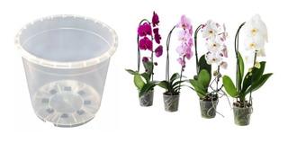 3 Macetas Para Orquideas De 6 Pulgadas