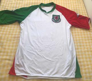 Camisa Futebol Seleçao País De Gales Wales Autêntica Oficial - Kappa - 2007 - Tam G