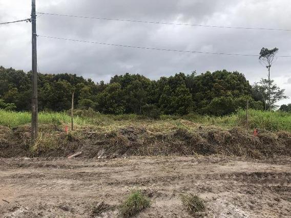 Terreno No Balneário Tupy, 1 Km Da Praia, Em Itanhaém