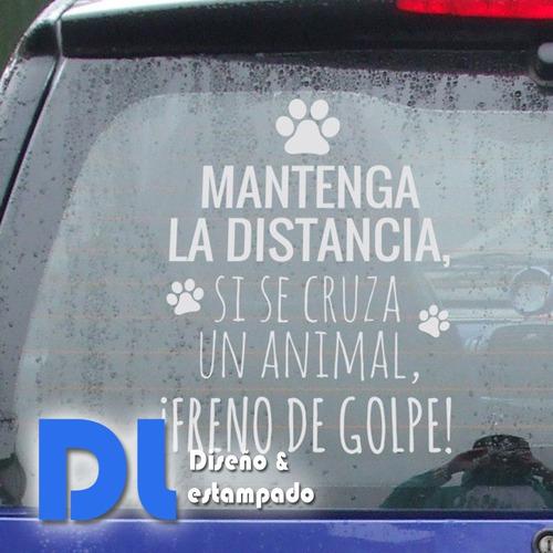 Vinilo Adhesivo Pegotin Para Auto, Camioneta, Automóvil