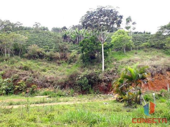 Terreno Para Venda Em Santa Teresa, Alto Caldeirão - 101116