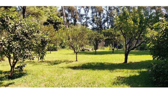 Casa Quinta General Rodriguez 10000 M2